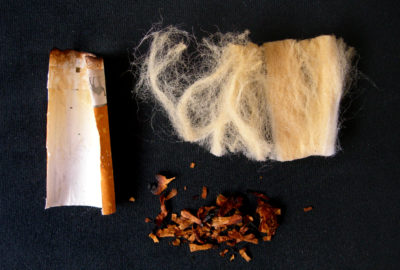 Bestandteile einer Zigarettenkippe: Filter aus Zelluloseacetat, Papier, Tabakreste | Components of a cigarette butt: filter made of cellulose acetate, paper, tobacco residues