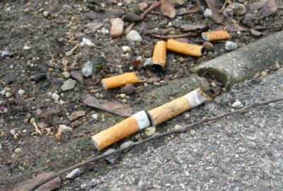 Weggeworfene Zigarettenkippen an der Straße | Cigarette butts by the road
