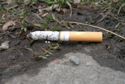 Weggeworfene Zigarettenkippe | Littered cigarette butt