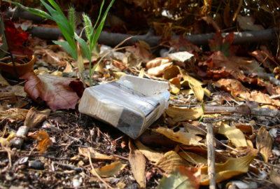 Weggeworfene Zigarettenschachtel | Littered cigarette package