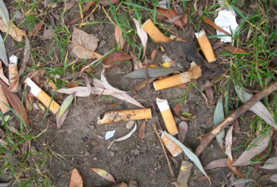 Zigarettenkippen auf nassem Boden | Cigarette butts on wet ground