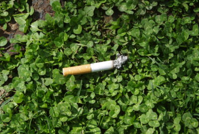 Zigarettenkippe im Grünen | Cigarette butt in the green