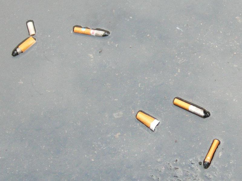 Zigarettenkippen in einer Pfütze