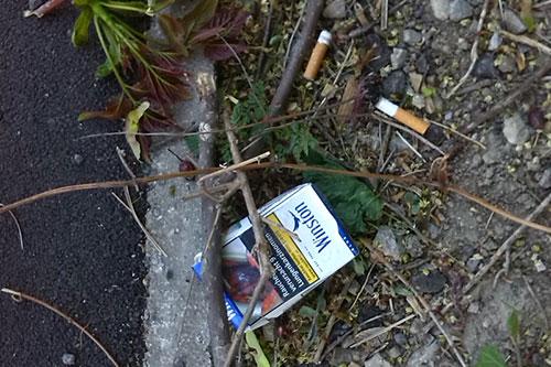 zigarettenpackung_muell_3