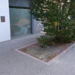 Kippen Sammel- und Zählprojekt 2021 Wien